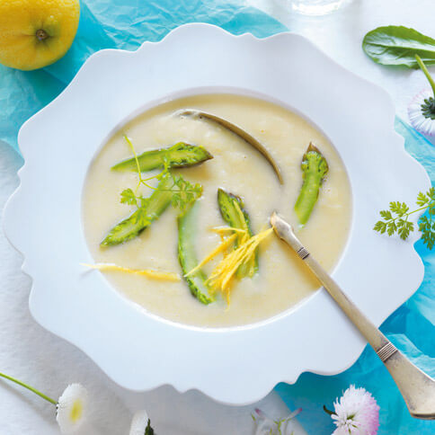 Alles Spargel Suppe